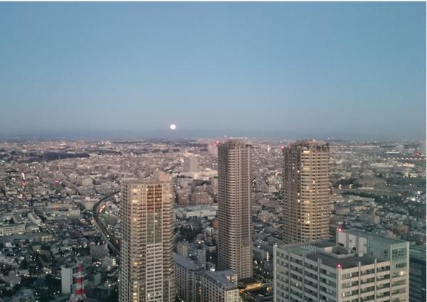 No368  ミッドスカイタワーにおける冬の眺望