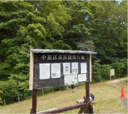 No.421  中原区市民健康の森について