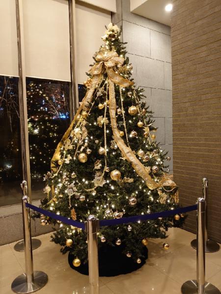 No. 445 クリスマスに向けたMSTの雰囲気作り